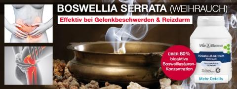 Boswellia Serrata Weihrauch