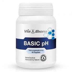 Basic pH