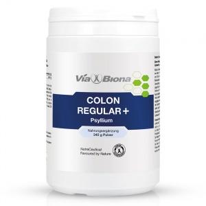 Colon regular+