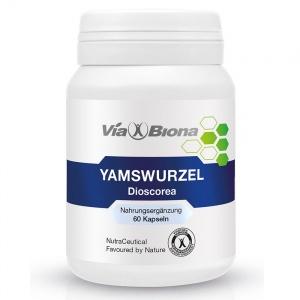 Yamswurzel Dioscorea
